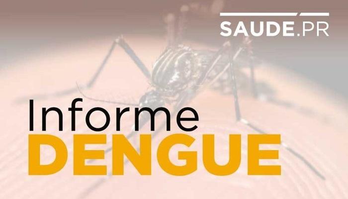 Casos de dengue sobem para 128,4 mil no Paraná